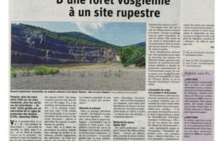 thumbnail of Article DNA Carrières – SITE INTERNET