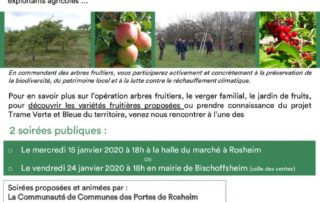 thumbnail of Opération arbres fruitiers