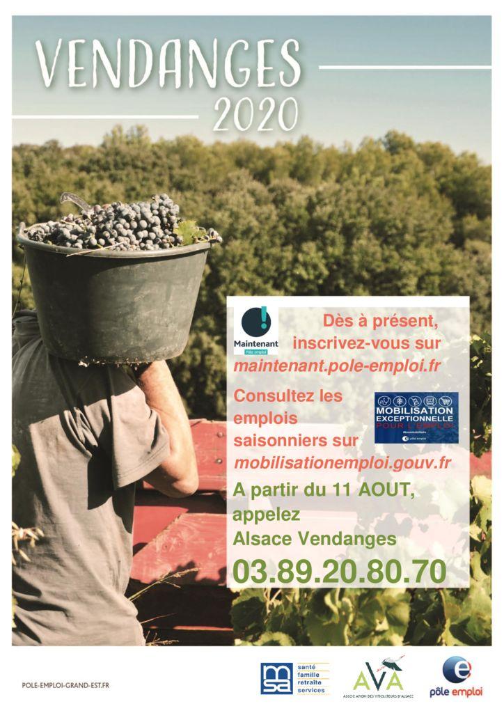 thumbnail of affiche_alsace_vendanges_3